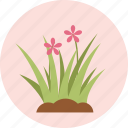 flower, flowers, garden, gardening, green, plant, tree icon