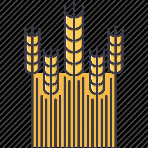 agriculture, farm, field, garden, nature, wheat icon