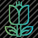 botanic, flower, gardening, plant