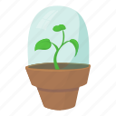 cartoon, cultivation, design, greenhouse, grow, shelter, warm icon
