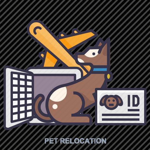 aeroplane, identity, pet, relocation icon