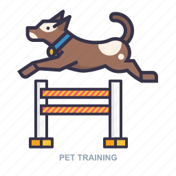 dog, game, pet, training icon
