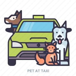 car, dog, pet, texi icon