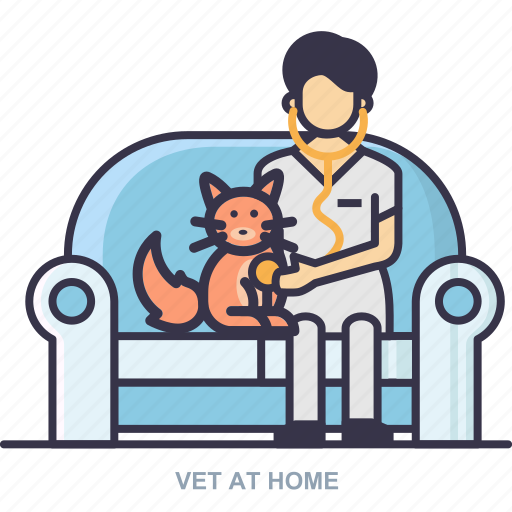 cat, doctor, home, vet icon