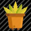 aloe, aloe vera, plant, pot, vera icon