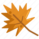 autumn, autumn leaves, leaves icon