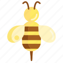 bee, bee sting, honeybee