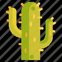 cacti, cactus icon