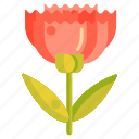 carnation, floral, flower icon