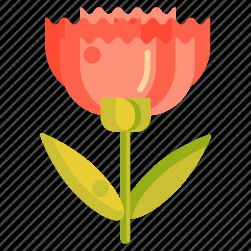 Carnation, floral, flower icon - Download on Iconfinder