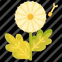 dandelion, floral, flower icon
