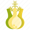 fennel, vege, vegetables icon