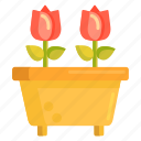 flower, flower pot, flowers, pot, rose, roses