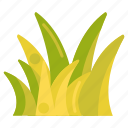 grass, nature, plant icon