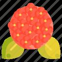 floral, flower, hydrangea icon