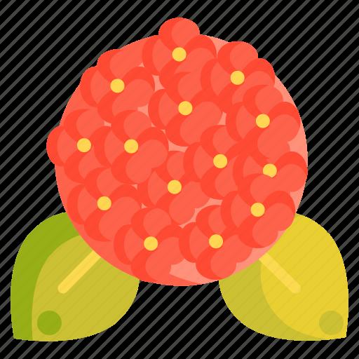 Floral, flower, hydrangea icon - Download on Iconfinder