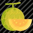 honey melon, honeydew, melon, wintermelon