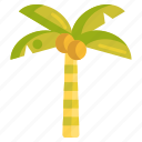 coconut, coconut tree, palm, tree icon