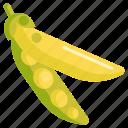 pea pod, pea pods, peas icon