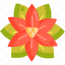 floral, flower, poinsettia