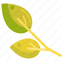 leaves, spring, spring leaf, spring leaves icon