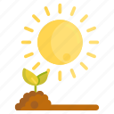 gardening, light, seedling, sun, sunlight icon
