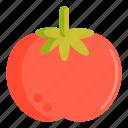 fruit, tomato, vege, vegetables icon