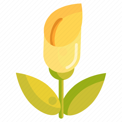 Floral, flower, nature, plant, zantedeschia icon - Download on Iconfinder
