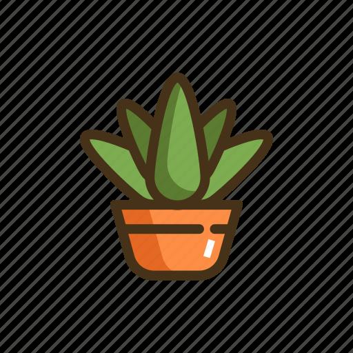 Aloe, vera, aloe vera, plant, pot, succulent icon - Download on Iconfinder
