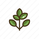 branch, leaves icon