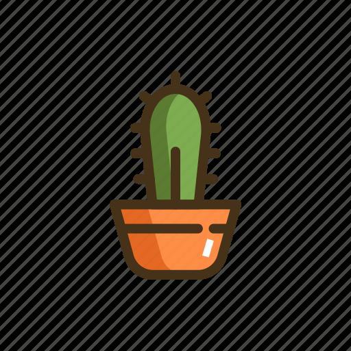 Cactus, cacti, plant, pot icon - Download on Iconfinder