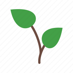 green, growing, nature, plant, seedling, tree, young icon
