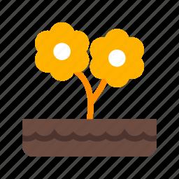 decoration, flower, flowers, garden, nature, plant, pot icon