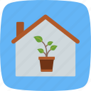 house, nursery, plant icon