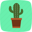 cactus, plant, pot icon