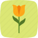flower, nature, tulip icon