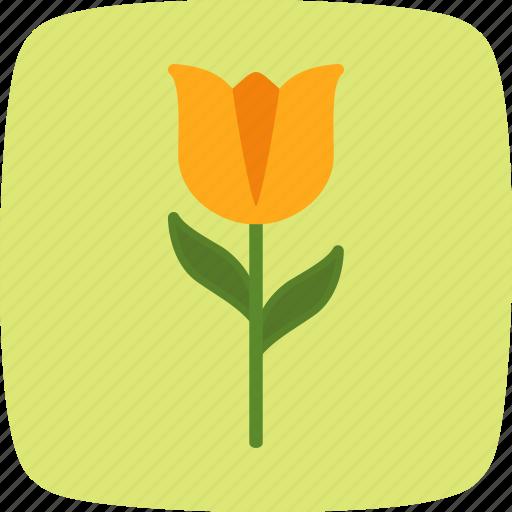 flower, nature, tulip icon