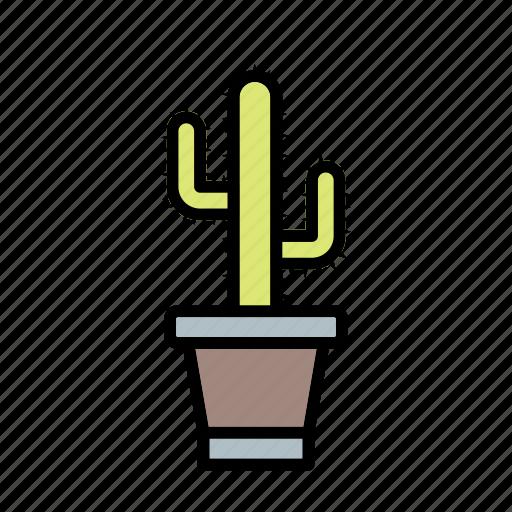 Cactus, plant, pot icon - Download on Iconfinder