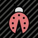 insect, lady bug, ladybug icon