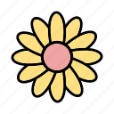 daisy, flower, garden icon
