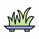 garden, grass, plant