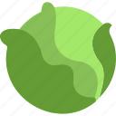 cabbage, food, organic, vegan, vegetarian icon