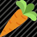 carrot, food, organic, vegan, vegetarian icon