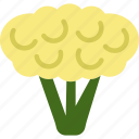 cauliflower, food, organic, vegan, vegetarian icon