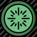cooking, food, gastronomy, kivi icon