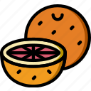 cooking, food, gastronomy, grapefruit icon