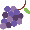 berry, food, fruit, grapes, healthy icon