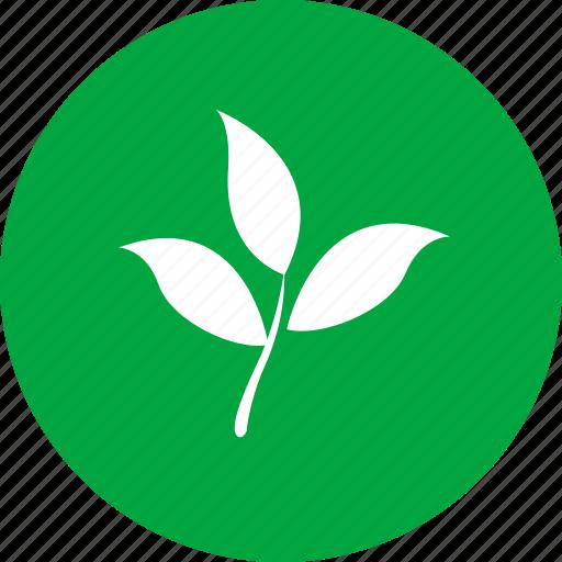 energy, green, nature icon