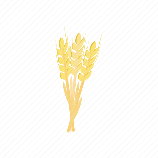 agriculture, barley, beer, food, harvest, isometric, plant icon