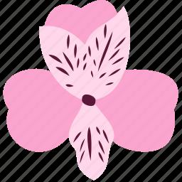 alstroemeria, decoration, floral, flower, nature, plant icon